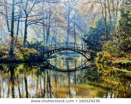 bridge in the misty morning stock photo © paulfleet