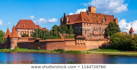 Kasteel Polen reizen architectuur gothic geschiedenis Stockfoto © phbcz