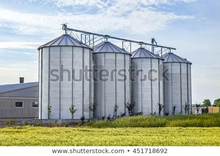 silver silos in corn field stock photo © meinzahn