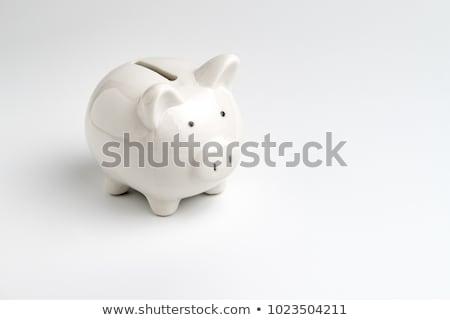 Spaarvarken witte roze keramische geïsoleerd business Stockfoto © pakete