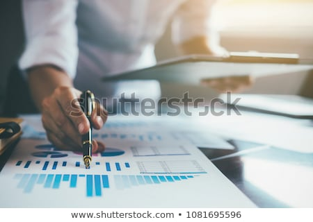 business audit stock photo © lightsource