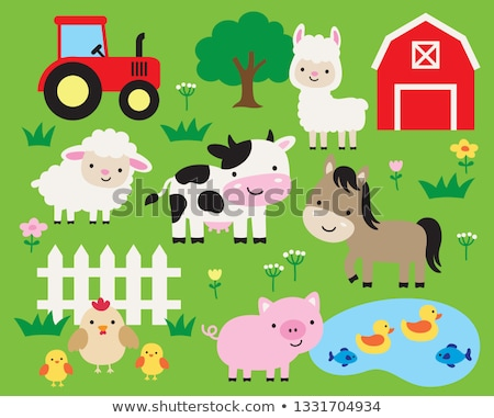 Stock photo: Farm animals living on the farm