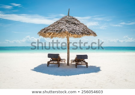 高級 ビーチ リゾート 2 傘 誰も ストックフォト © shevtsovy