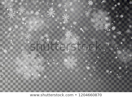 Seamless vector white snowfall effect on black transparent horizontal background. Overlay snow flake Stock photo © Iaroslava