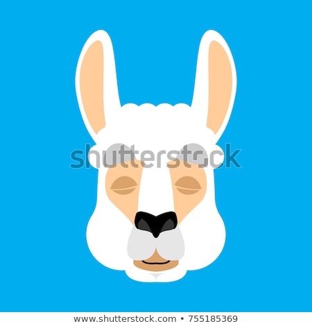 Lama Alpaca sleeping. Animal asleep emoji. Vector illustration Stock photo © popaukropa
