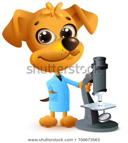 Jaune chien enseignants microscope biologie Photo stock © orensila