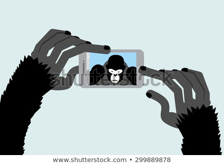 Selfie Monkey. Black Gorilla photographs. Animal and a Smartphon Stock photo © popaukropa