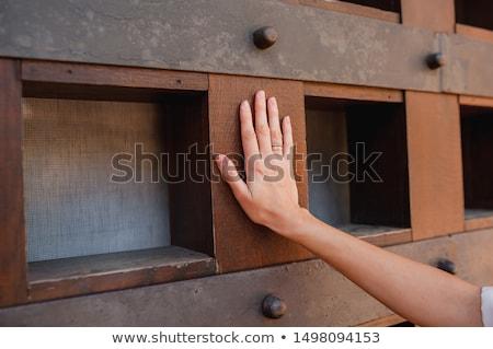 curioso · mujer · espionaje · trabajo · ventana · binoculares - foto stock © is2