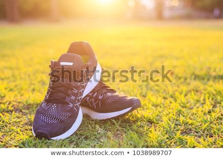 ペア 男 スポーツ 靴 緑 フィールド ストックフォト © kenishirotie