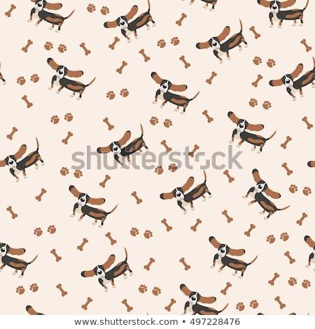 Cartoon Basset Hound Leash Stock photo © cthoman