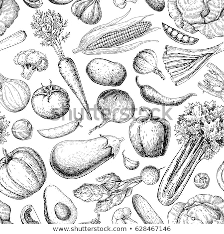 Background of  potato. Vector seamless pattern of vegetables. Stock photo © popaukropa