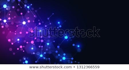 Digitális vektor genetikai mérnöki technológia génmanipulált Stock fotó © frimufilms