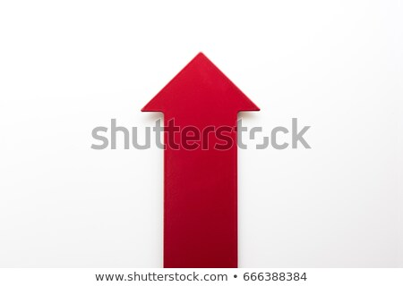 Arrows Pointing Up that Show Increase Isolated Stock photo © robuart