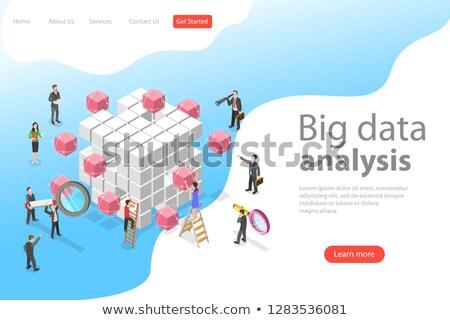 isometrische · groot · gegevens · analyse · landing · pagina - stockfoto © tarikvision