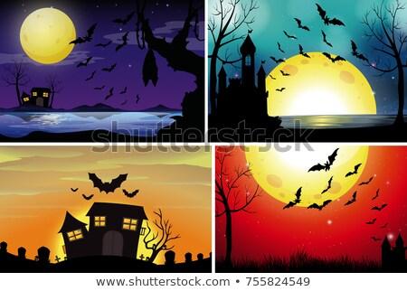 Cuatro noche ilustración paisaje arte campo Foto stock © colematt
