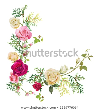frame of pink roses brunches Stock photo © neirfy