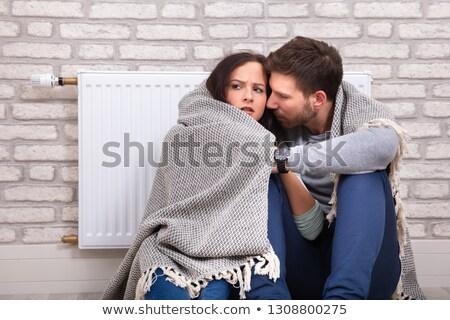 nő · pléd · ül · termosztát · fiatal · hideg - stock fotó © andreypopov