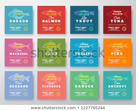 Mackerel in the package Stock photo © bluering
