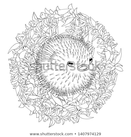 hal · fehér · illusztráció · boldog · művészet · trópusi - stock fotó © colematt