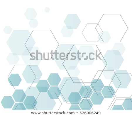 Brochure creative design with hexagon pattern Stock photo © designleo