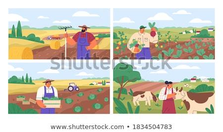Set of farmland scene Stock photo © colematt