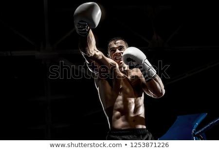 Photo jeunes fort sport homme boxeur Photo stock © deandrobot