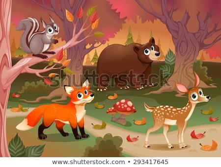 набор · животные · природы · сцена · иллюстрация · фон - Сток-фото © bluering
