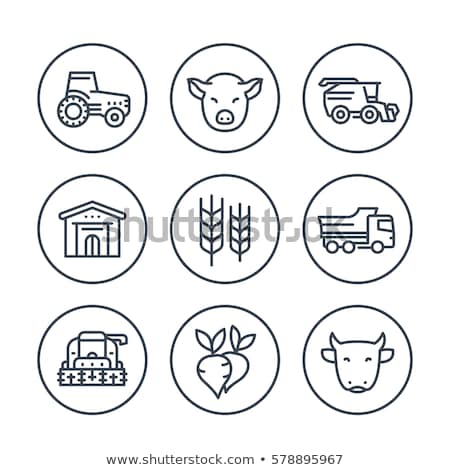 Farming Harvester Vehicle Vector Thin Line Icon Stock photo © pikepicture