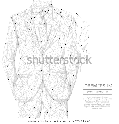 elegant white low poly lines connection background Stock photo © SArts