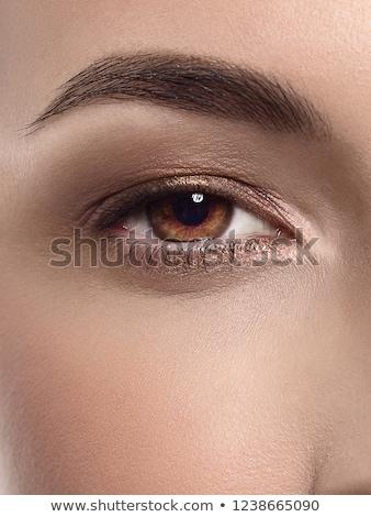 makró · lövés · gyönyörű · szem · hosszú · szempilla - stock fotó © serdechny