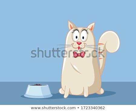 Komik sevimli kediler hayvan çanak Stok fotoğraf © rwgusev
