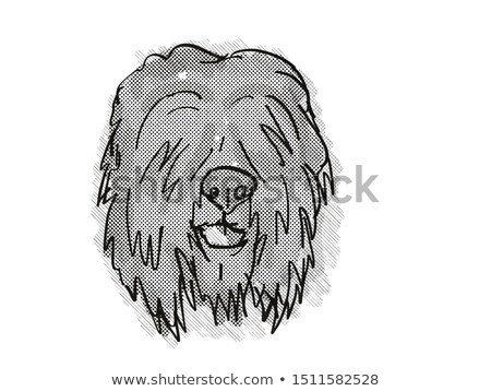 black russian terrier dog breed cartoon retro drawing stock photo © patrimonio