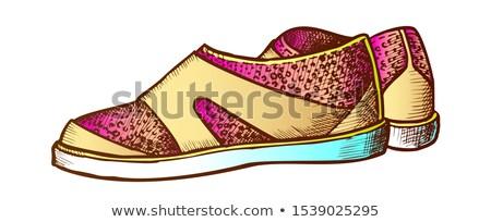 Ayakkabı su spor dalış renk vektör Stok fotoğraf © pikepicture