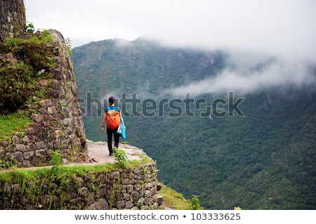 Steep view of Machu Picchu, Peru stock photo © photoblueice