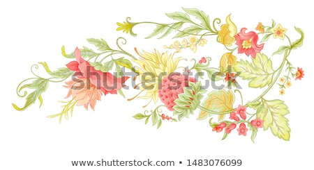 Orient flowers vector illustration background Stock photo © cienpies
