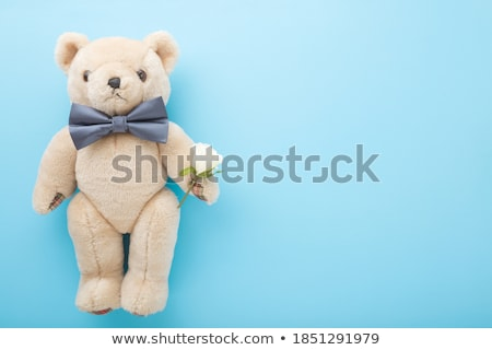 white rose bow tie and blank place card stock photo © rtimages