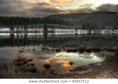 Preto floresta idílico aldeia cenário em torno de Foto stock © prill