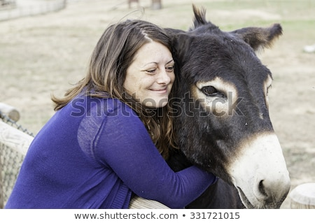 female farmer feeding donkey Stock photo © photography33