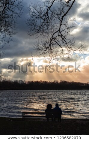 Couple sat in front of tree Stock photo © photography33