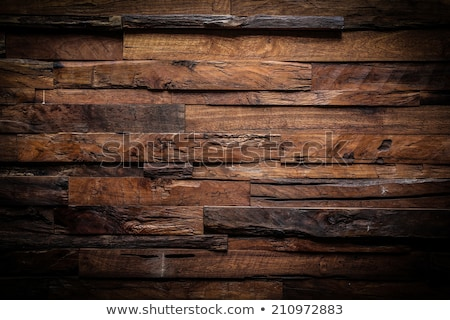 Carpenters cutting a plank of wood Stock photo © photography33