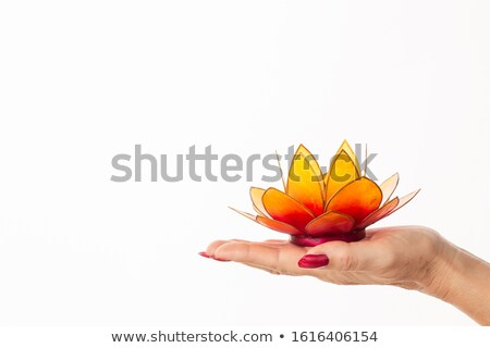 hand lighting tea light candle with white lily in background stock photo © wavebreak_media
