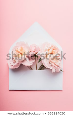 open envelope with flowers card stock photo © adamson
