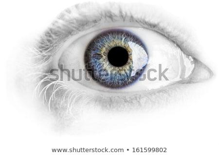 Stok fotoğraf: Makro · mavi · göz · ayrıntılar · stüdyo · ışıklar