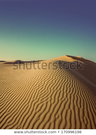 evening desert - vintage retro style Stock photo © Mikko