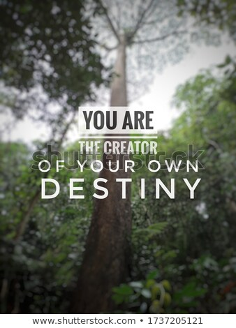 You are the creator of your own destiny. Stock photo © maxmitzu