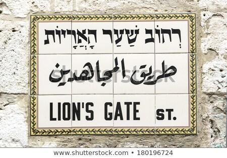 Leone cancello segnale stradale Gerusalemme Israele viaggio Foto d'archivio © AndreyKr