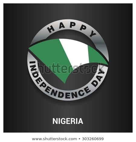 Metal ikona Nigeria placu banderą kolory Zdjęcia stock © dvarg