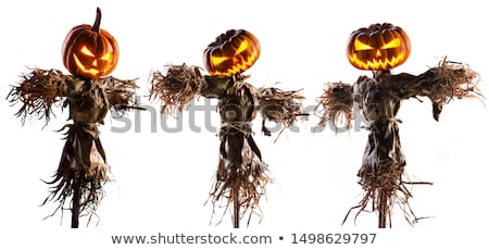 пугало · фермы · области · осень · праздник - Сток-фото © adrenalina