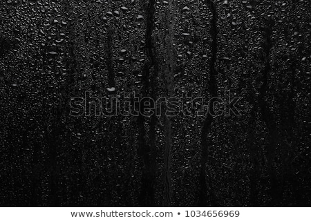 wet window surface Stock photo © carloscastilla