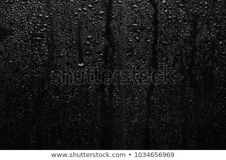 ぬれた ウィンドウ 表面 嵐 市 水 ストックフォト © carloscastilla